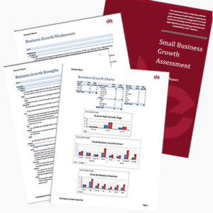 Small Business Growth Assessment