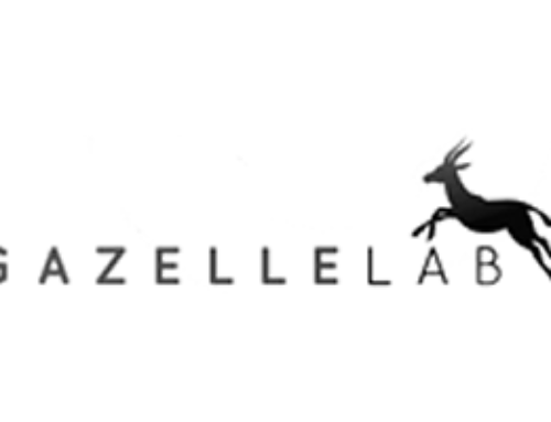 Gazelle Labs Primary Mentor